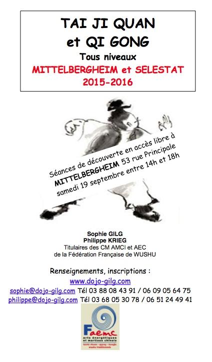 affiche +découvertes 2015 2016